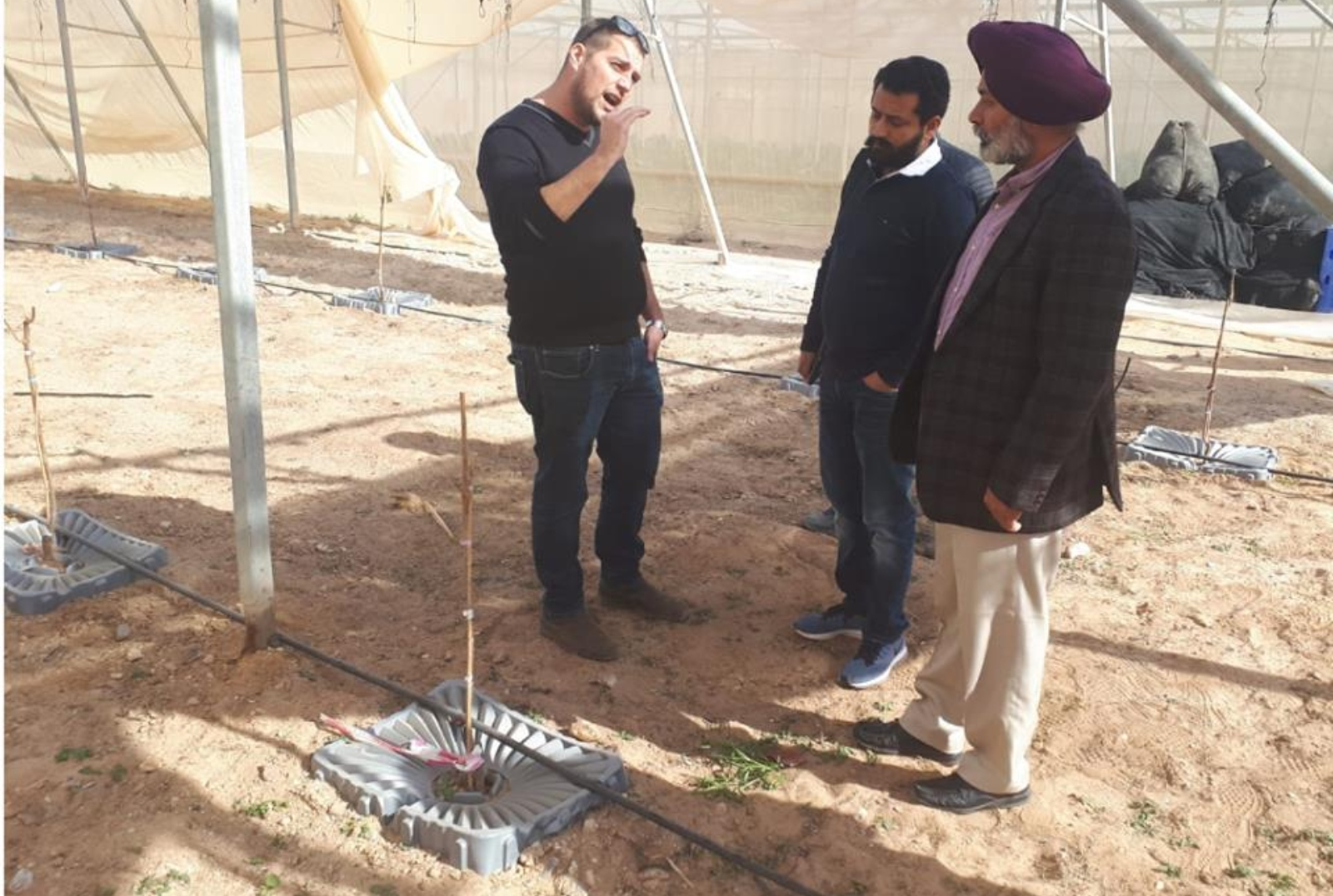 In January 2019, academicians from Punjab Agriculture University, India, came to see Tal-Ya in use at the Arava R&D Center in Israel. Photo: courtesy
