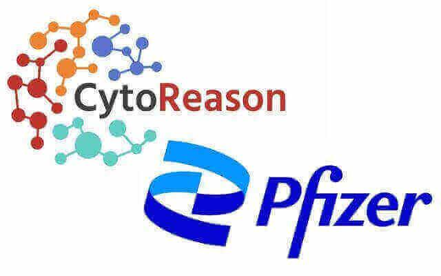 Cyto-Pfizer logo