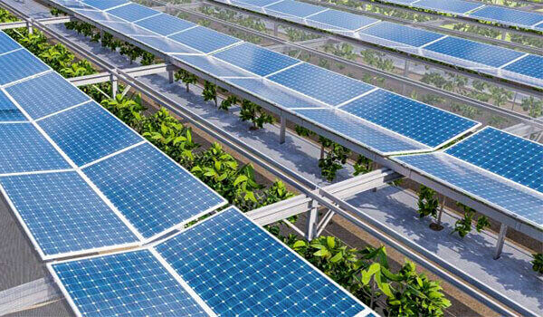 Technion and Doral-Tech: Innovating sustainable solutions for the planet.